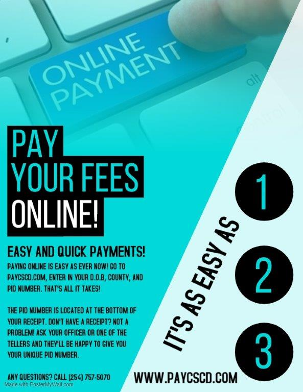 Online Payment Flyer