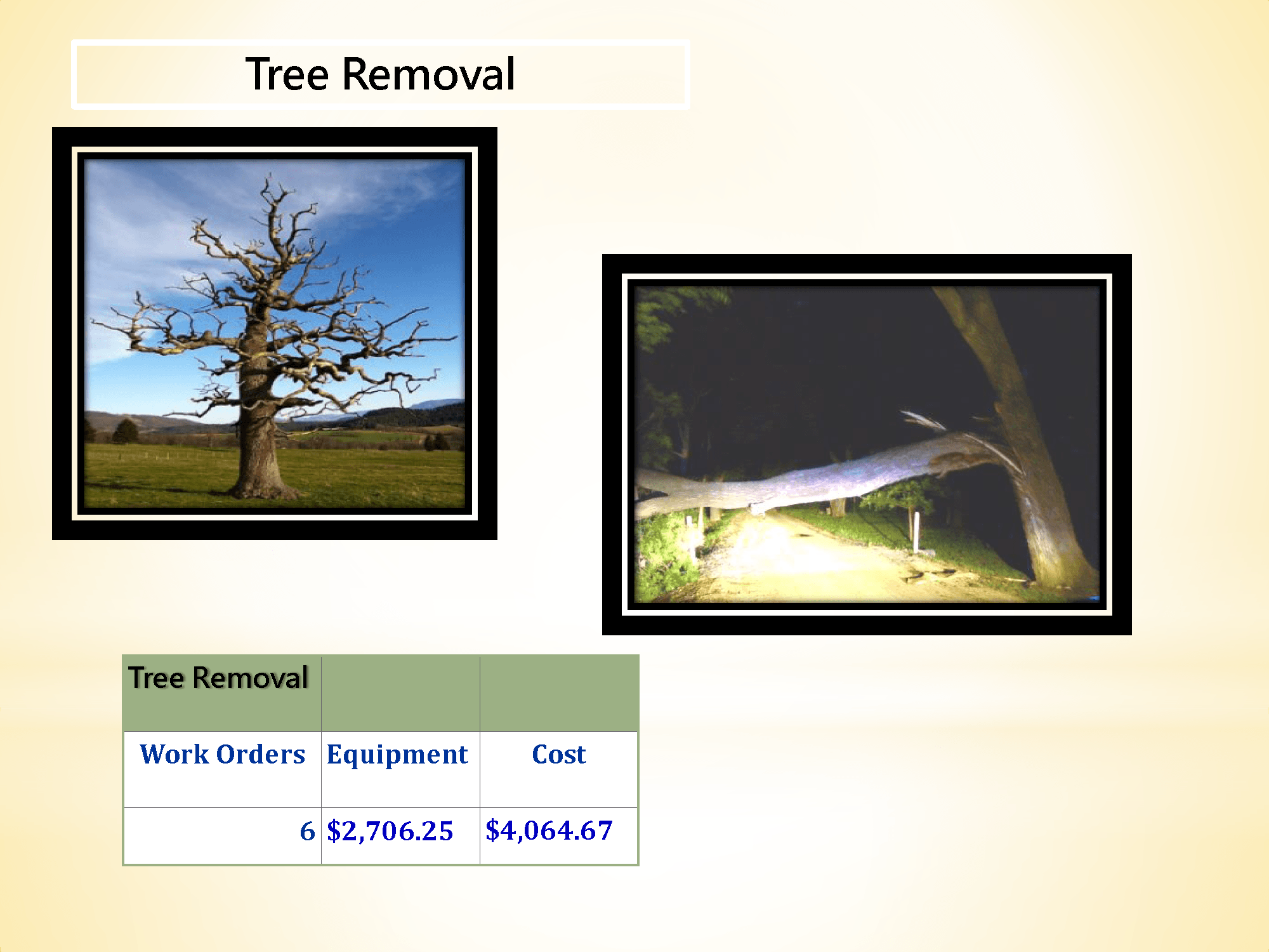 McLennan County Precinct 4 Road & Bridge Tree Removal